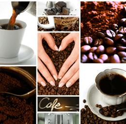 Colombia, líder de la secretaría del subcomité ISO del Café